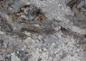 amarone-blackstone-ottawa-countertops-granite-slabs-4