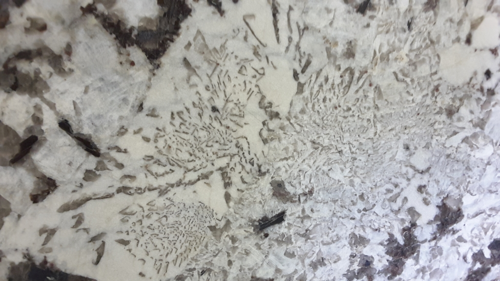 Ottawa Granite Countertop Slabs Royal White