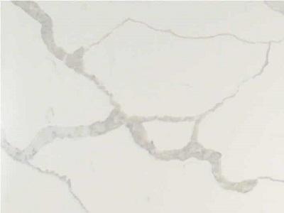 calacutta-elite-close-up-z1705