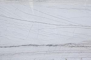 macabus-white