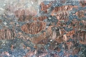 optimized-tan-brown-close-up-1024x576