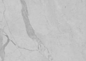 statuarietto-close-up